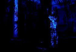 xrafa2014aissa santiso-proyeccion x ruina_72
